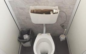 Само се радвам, че чехът е спестил декорацията, която съпровожда нашите WC-та!