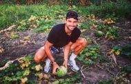 Гришо обра реколтата в Хасково