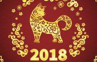 Хороскоп на Тамара Глоба-Символът на следващата 2018 г. ще бъде Жълто земно куче-Тоя ще е благоприятна за 3 зодии
