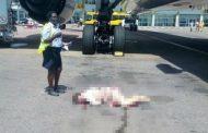 Българска стюардеса е мъртва след падане от самолет в Уганда