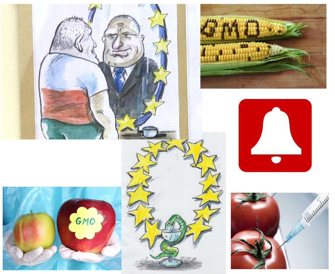 Господин Борисов, в огледалото ще откриете кой е виновен за отровната храна в България