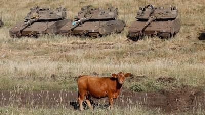 В България хващата рецидивистите само ако са крави! Сърбия, та Сърбия, а после терорист в България.