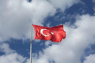 В Турция започна гласуването на предсрочните президентски и парламентарни избори