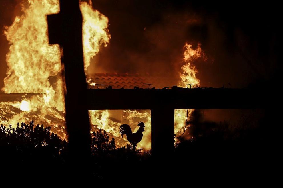 Огромни горски пожари в Гърция. Засега жетвите са 24