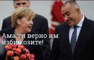 Питам Цацаров: Ще подведе ли под отговорност Бойко Борисов за масово унищожение на поминъка на народа?