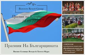 Celebration BG banner