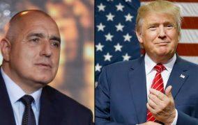 Приликите между Борисов и Тръмп? И двамата са способни на всичко, за да са на власт!
