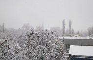 Сняг в Ню Йорк, Вашингтон и Бостън по никое време
