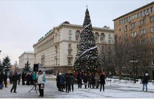 Защо САЩ не подари елха за Коледа на София? Сигурно щеше да е с играчки орелчета.