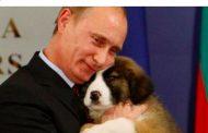 Искам да подарим десет самолета МИГ-23 на България, но Борисов и ГЕРБ предпочитат да дадат 2 милиарда на САЩ