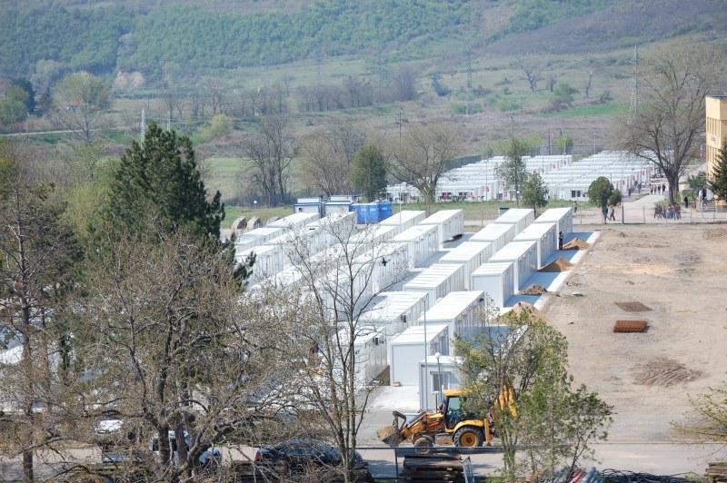 Разбрахте ли, защо изтрепаха животните в Странджа? 1 600 мигранта в Елхово са едни 16 милиона Евро допълнително