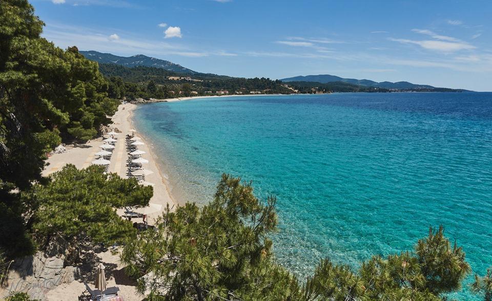 Значи, това гърците са много глупави хора! Такива хубави плажове имат, а не знаят как да изкарват пари от тях. Нямат нито концесионери с дебели вратове, нито огромни хотели!