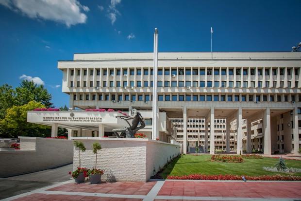 """Българският консул в Хага събирал такса """"коронавирус"""""""