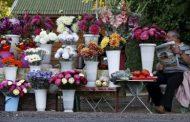 Търговците на цветя: Обричат ни на фалит, а в големите магазини е пълно с цветя.