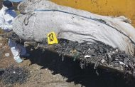 Над 120 тона достигна откритото количество незаконно загробен боклук край Червен бряг и с. Рупци