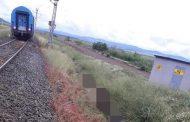 Бързият влак Бургас-София блъсна стадо крави. 22 животни умряха